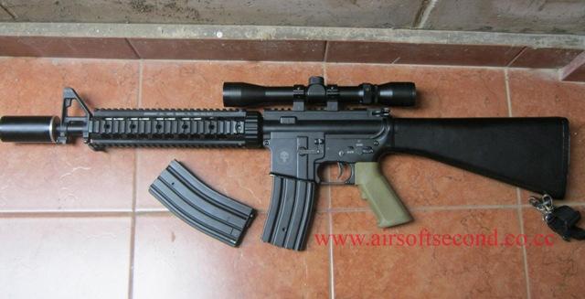M4 Ris Custom