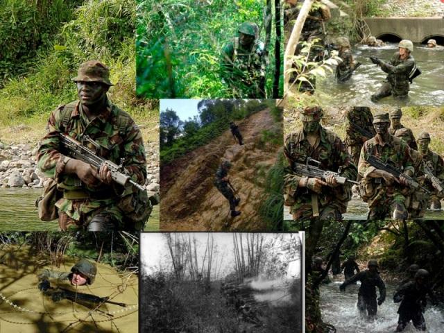jungle warfare